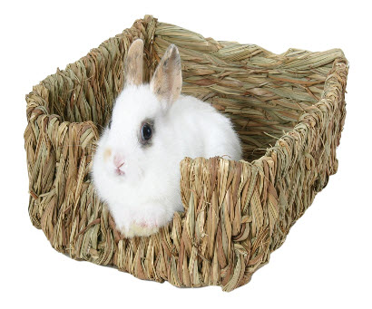 Peters Woven Grass Rabbit Bed